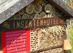 Insektenhotel – Fachberatertipp