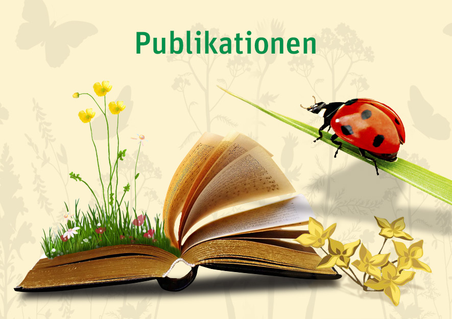 Publikationen Fachtitel Studien vom LSK