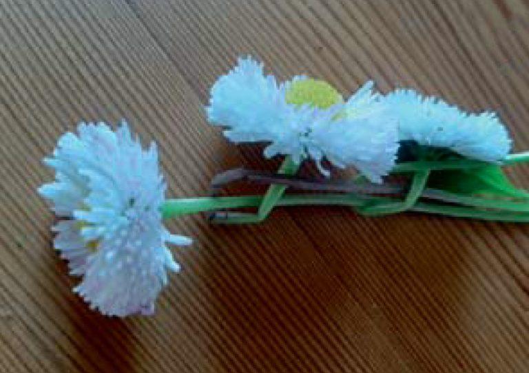 Kinderseite - Blumenkränze flechten