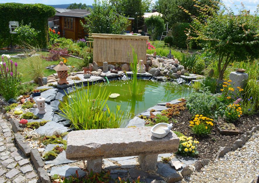 Gartenteich und Biotope