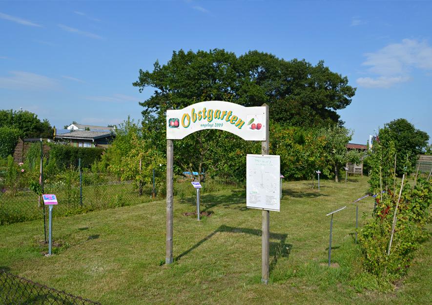 Obstgarten - Gemeinschaftseinrichtung Kleingartenanlage