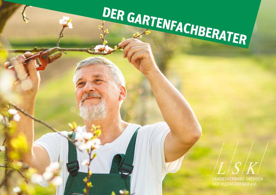 Der Gartenfachberater mit Fachberaterausbildung im Kleingarten