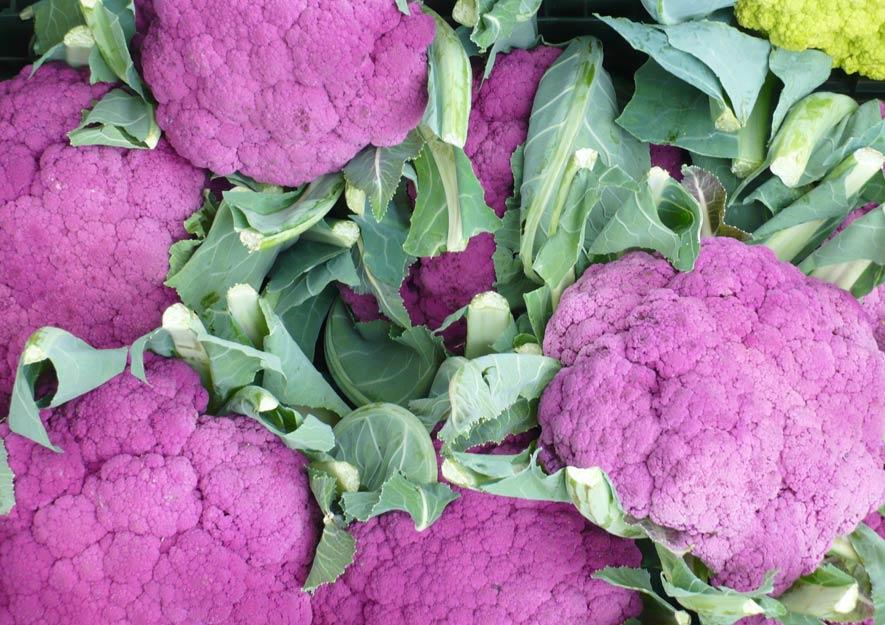 Abwechslung bei Gemüsesorten - Blumenkohl