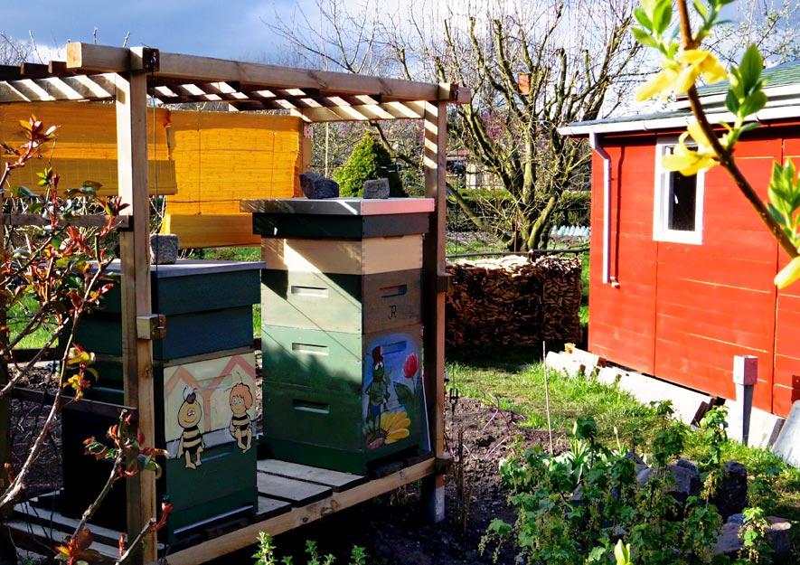 Bienenstöcke im Kleingarten