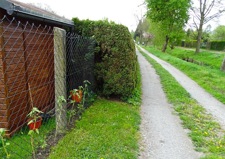 Grenzabstand von Aussenhecken in Kleingartenanlagen