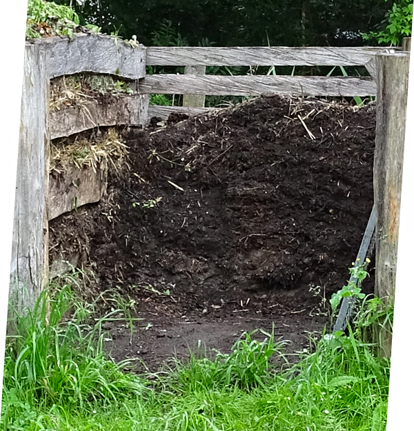 Fachgerechte Kompostierung und Entsorgung