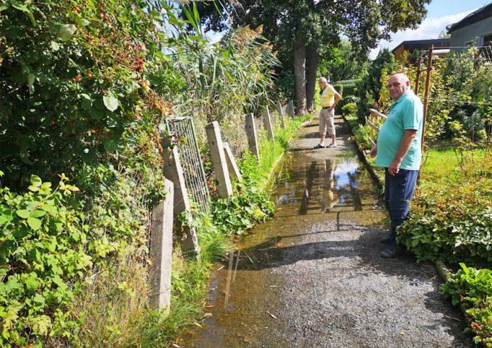 Biberschaden - überfluteter Bachweg
