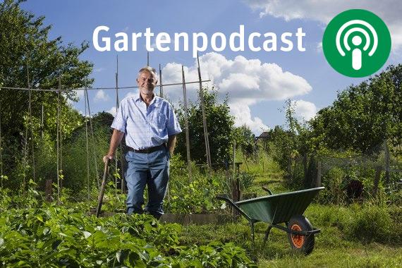 Gartenpodcast - Sächsische Gartenakademie