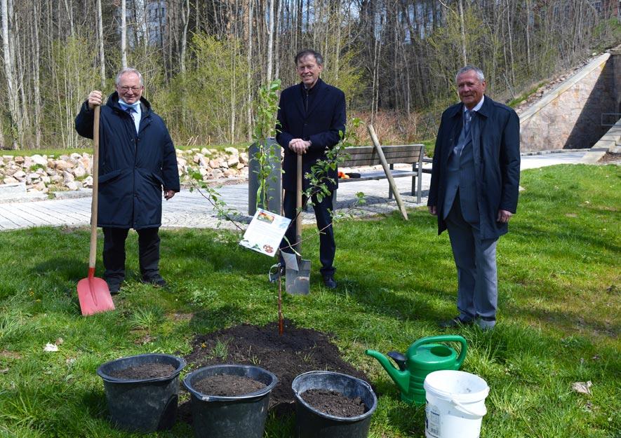 Tag der Sachsen 2022 Frankenberg - Baumpflanzaktion