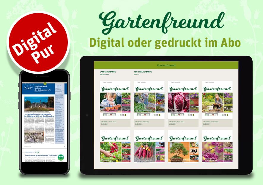 Gartenfreund Verbandszeitschrift der sächsischen Kleingärtner