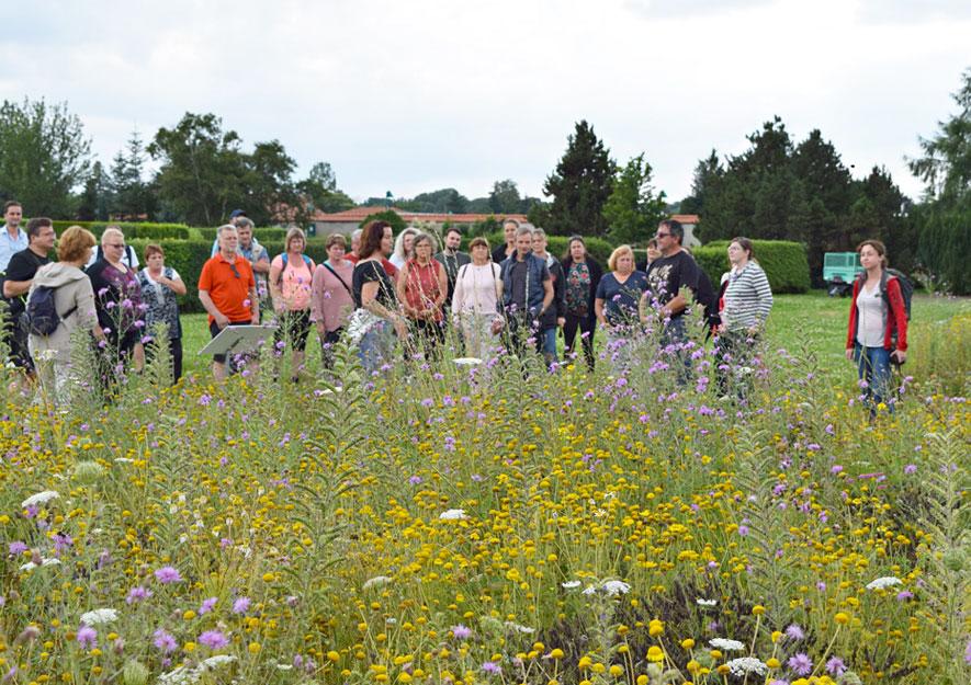 Gartenakademie Pillnitz – Gartenfachberater Schulung