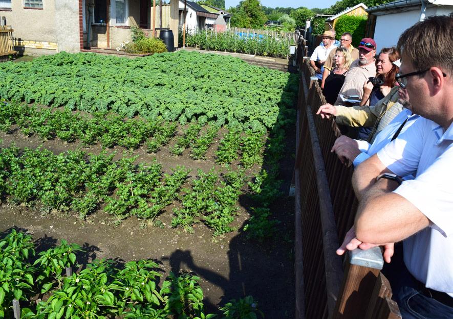 Tafelgärten und weitere soziale Projekte