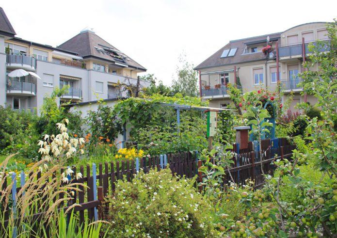 Kleingärten in städtischen Strukturen